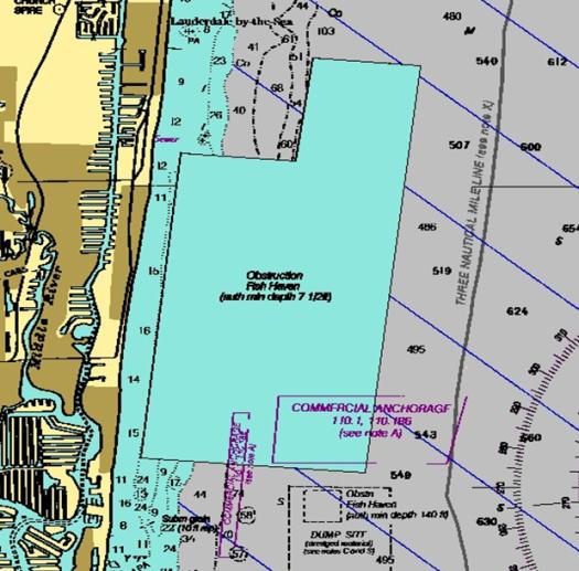 Initial reef proposal
